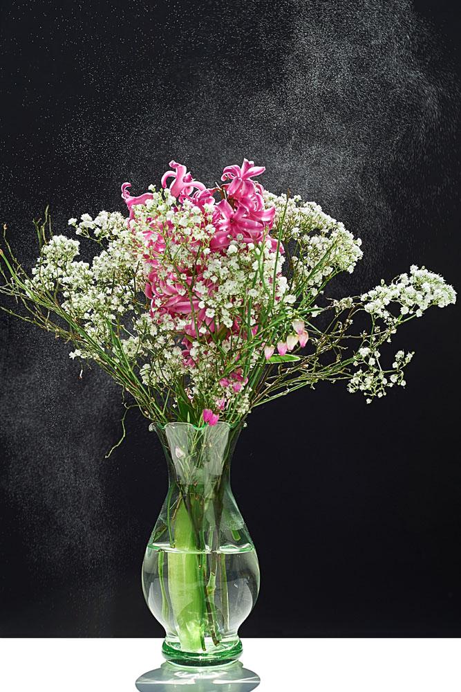 Pot de fleur - ©Bruno Larue, reproduction interdite